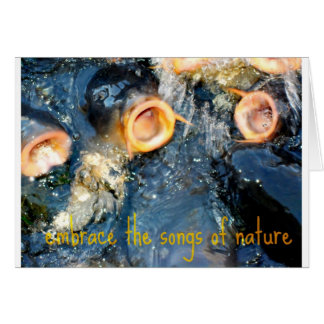 Carp Trio embrace the songs of nature Card