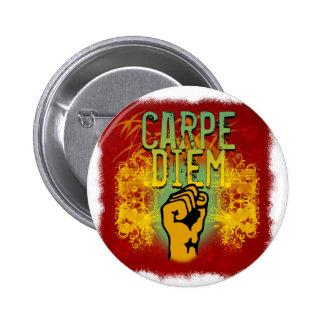 Carpe Diem Pinback Buttons