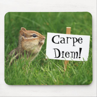 Carpe Diem! Chipmunk with Sign Mouse Pad