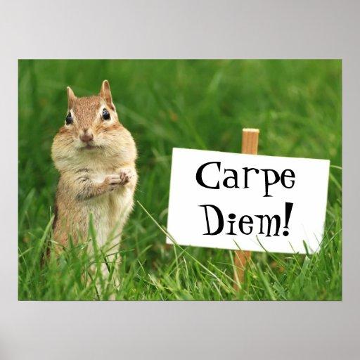 Carpe Diem Chipmunk with Sign Poster