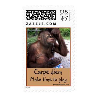 Carpe Diem Cutest Animal Orangutan Postage