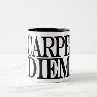 Carpe Diem Latin Quote Mug