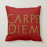 Carpe Diem Pillow