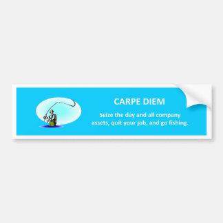 carpe-diem-seize-the-day-and-all-company-assets car bumper sticker