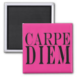 Carpe Diem Seize the Day Latin Quote Happiness 2 Inch Square Magnet