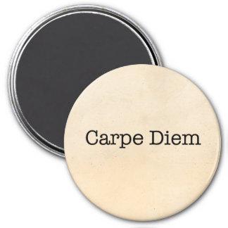 Carpe Diem Seize the Day Quote - Quotes Magnet