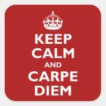 Carpe Diem! Square Stickers