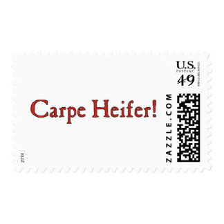 Carpe Heifer $0.49 Stamps