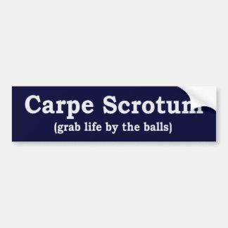 Carpe Scrotum Car Bumper Sticker