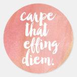 Carpe That Effing Diem Pink Watercolor Quote Classic Round Sticker