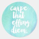 Carpe That Effing Diem Quote Stickers   Aqua