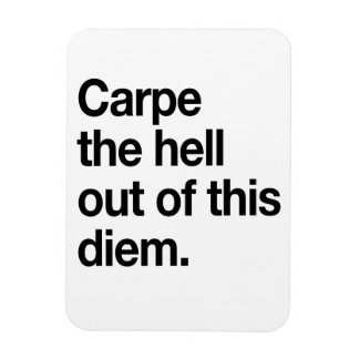 Carpe the Hell Out of This Diem Rectangular Photo Magnet