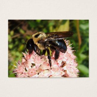 Carpenter Bee ~ ATC Business Card