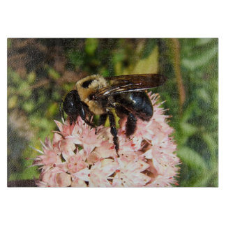 Carpenter Bee ~ Cutting Board