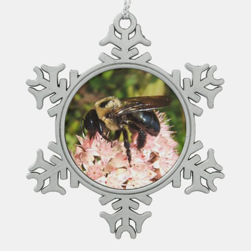 Carpenter Bee ~ Pewter ornament
