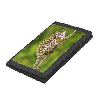 Carpet chameleon tri-fold wallet