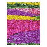carpet of flowers letterhead design