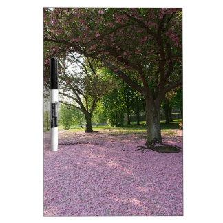 Carpet of prunus pink flowers dry erase board