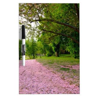 Carpet of prunus pink flowers dry erase white board