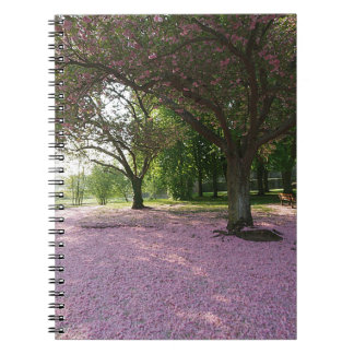 Carpet of prunus pink flowers spiral notebook