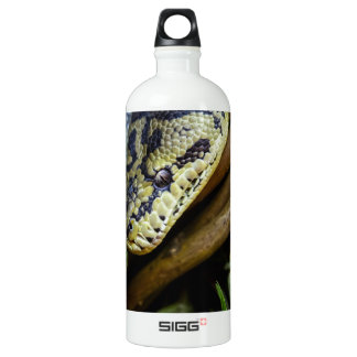 Carpet Python Water Bottle