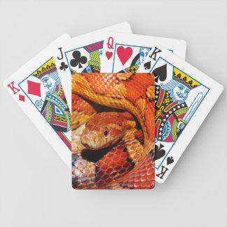 Carpet Snake Bicycle Playing Cards