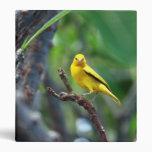 Carpeta amarilla del pájaro