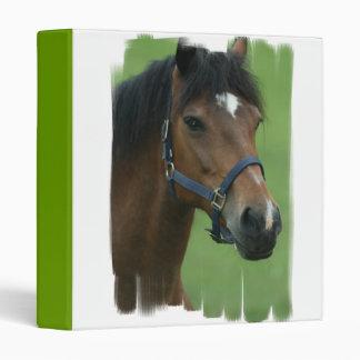 Carpeta árabe de la imagen del caballo