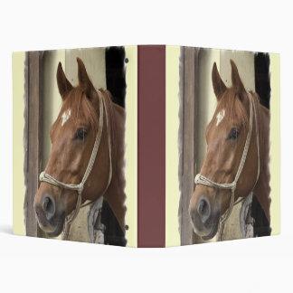 Carpeta árabe del caballo