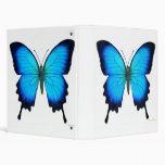Carpeta azul de Avery de la mariposa de Ulises