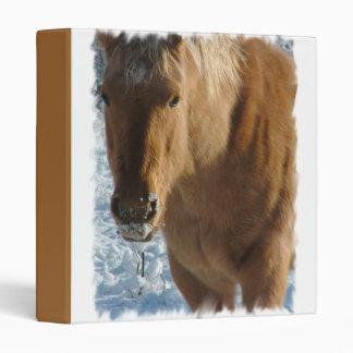 Carpeta belga del caballo de proyecto