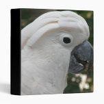 Carpeta blanca del Cockatoo