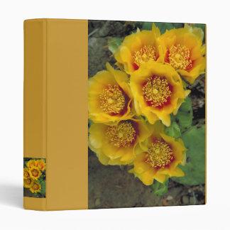 Carpeta/cactus del este del higo chumbo en la flor