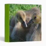 Carpeta canadiense de los ansarones de los gansos