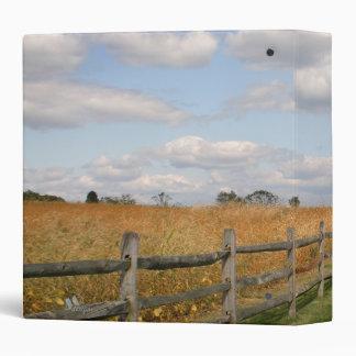 Carpeta cercada del camino
