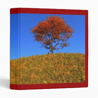 Carpeta clara del día del otoño