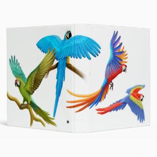 Carpeta colorida de los Macaws