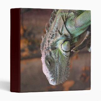 Carpeta con el lagarto colorido de la iguana
