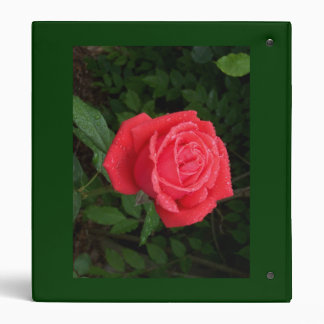 Carpeta cubierta de rocio del rosa rojo