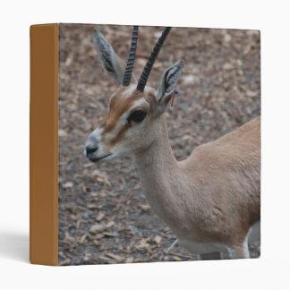 Carpeta de cuernos delgada del Gazelle