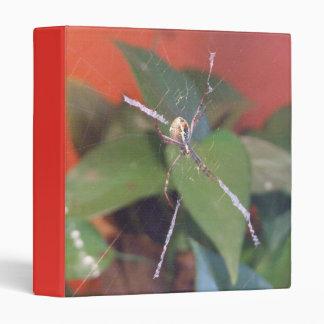 Carpeta de la araña del orbe
