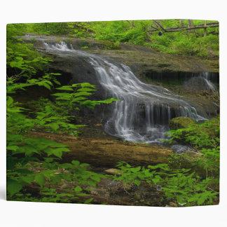 Carpeta de la cascada