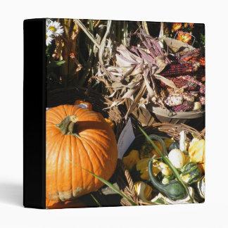 Carpeta de la cosecha del otoño