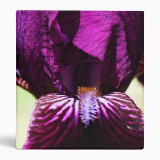Carpeta de la floración del iris