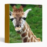 Carpeta de la foto de la jirafa