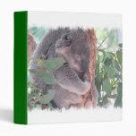 Carpeta de la foto de la koala