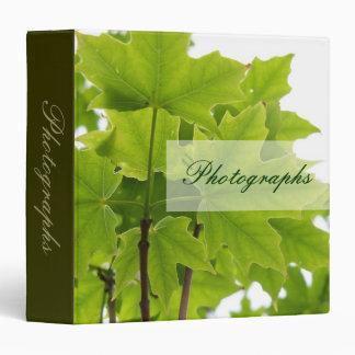 Carpeta de la foto de las hojas de arce del azúcar