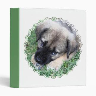 Carpeta de la foto del perrito del pastor
