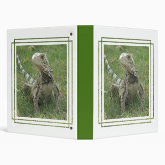 Carpeta de la iguana