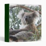 Carpeta de la koala